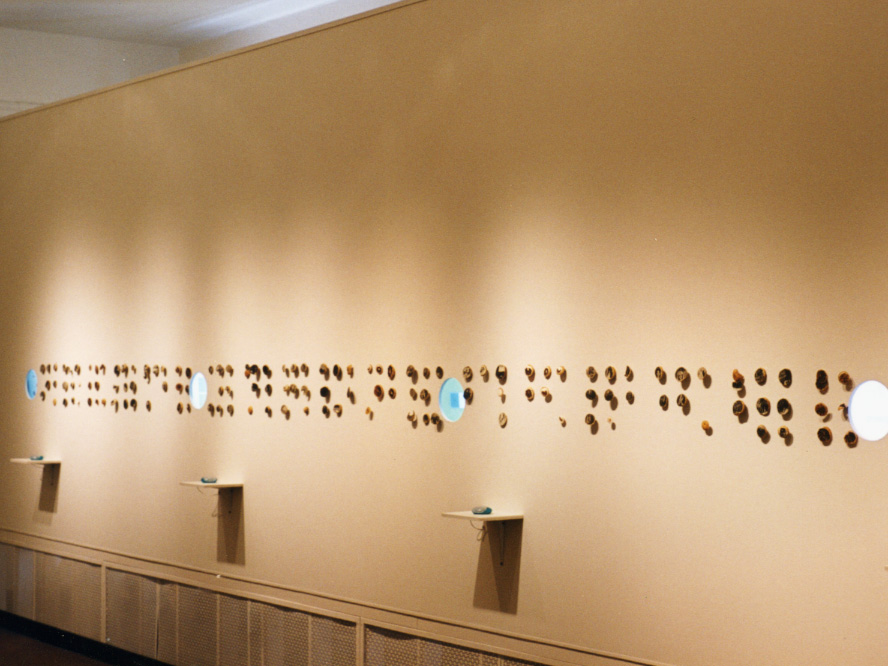 Excerpts From An Archive - Installation View