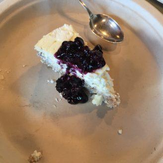 Recipes for Undomestication — Summer Happening Update